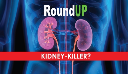 roundup_kidney_killer
